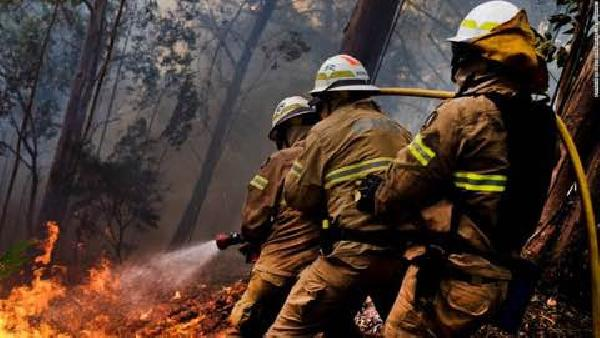 Portekiz'de 3 günlük yas; yangında ölü sayısı 62'e yükseldi