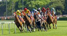 91. Gazi Koşusu öncesi at sahipleri duygularını anlattı