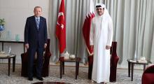 Araplar ve Türkiye