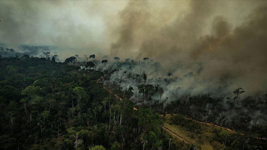 Amazonlar yanıyor