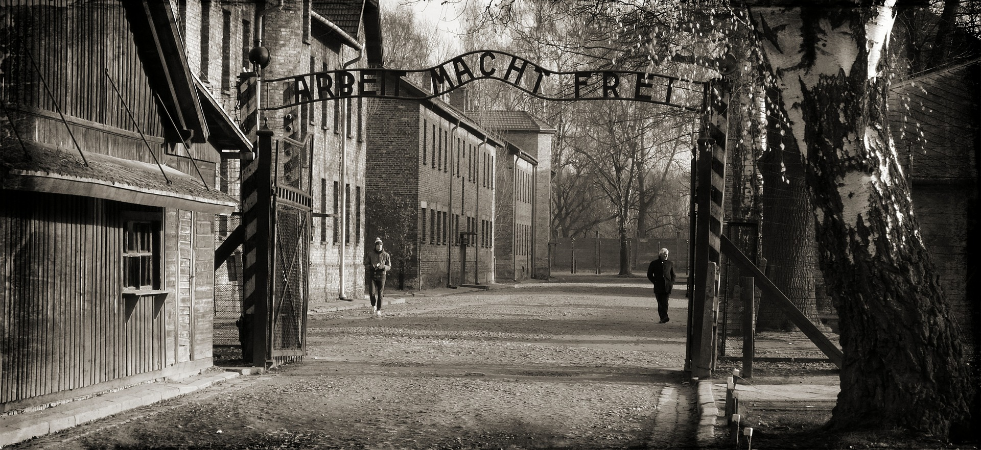 """""""Auschwitz saymanı"""" 96 yaşında öldü"""