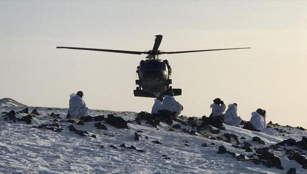 Tendürek Dağı'nda 20 terörist etkisiz hale getirildi
